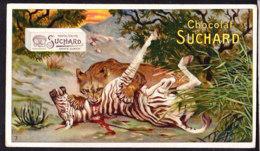 CHROMO Chocolat SUCHARD Animaux  Panthere   Animals   Serie 142 - Suchard
