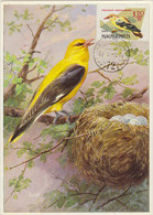 HUNGARY 1961 Max Card With Bird.BARGAIN. - Birds