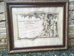 Ettelbruck Exposition Nationale Agricole Diplome - Cartes Postales