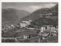 SONDRIO Al Piazzo Vera Fotografia Ed. Ris. Vicari Sondrio - Sondrio