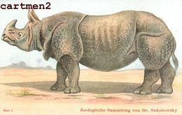 ZOOLOGISCHE SAMMLUNG VON DR. SOKOLOWSKY ZÜRICH ZOOLOGIE RHINOCEROS INDISCHES NASHORN ILLUSTRATEUR ANIMAUX ZOO PHOTOGLOB - Rhinocéros