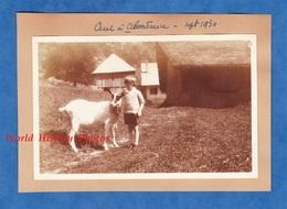 2 Photos Anciennes - ABONDANCE ( Haute Savoie ) - Superbe Cliché De Petite Fille & Chèvre - Sept 1930 - Alpes Montagne - Anciennes (Av. 1900)