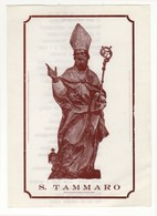Santino Antico San Tammaro - Religione & Esoterismo