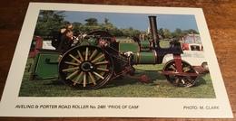 Aveling & Porter Road Roller No. 2481 'Pride Of Cam' ~ Photo: M. Clark - Postcards