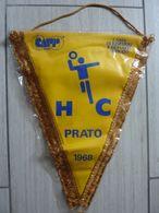 """Grande Gagliardetto """"HC PRATO  1968"""" - Handball"""