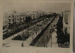 Tel-Aviv // Boulevard Rothschild // Used 19?? - Israël