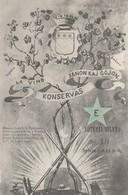 CPA  ESPERANTO  LA VINO KONSERVAS SANON KAJ GOJON  BILLET LOTERIE - Esperanto