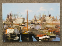 ROTTERDAM - CROWDED HARBOUR - Cargos