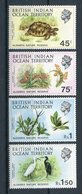 1971 - B.I.O.T. - FLORA & FAUNA -   4 VAL.  M.N.H.- LUXE !! - British Indian Ocean Territory (BIOT)