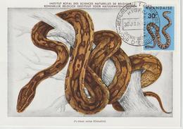 Rwanda Carte Maximum Serpents 1967 Python 192 - Rwanda