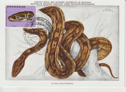Rwanda Carte Maximum Serpents 1967 Python 195 - Rwanda
