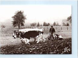 Agriculture - Les Vieux Métiers - N°89 - La Paire De Boeufs Au Labours - Cultures