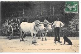 Cpa....paysan Morvandiau..attelage..aitou Sas Deux Boeufs Bians...animée...1912.... - Non Classés