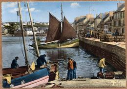 29 / CAMARET - Quais Du Port De Pêche (animés) - Années 50-60 - Camaret-sur-Mer