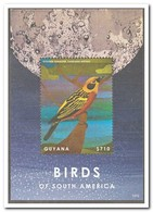 Guyana 2013, Postfris MNH, Birds - Guyana (1966-...)