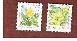 IRLANDA (IRELAND) - SG 1669 -   2004  FLOWERS & PLANTS:      - USED - 1949-... Repubblica D'Irlanda