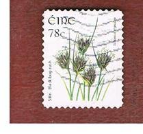 IRLANDA (IRELAND) - SG 1699 -   2007  FLOWERS & PLANTS: SCHOENUS NIGRICANS    - USED - 1949-... Repubblica D'Irlanda