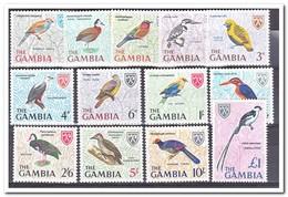 Gambia 1966, Postfris MNH, Birds - Gambia (1965-...)