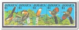 Jamaica 1982, Postfris MNH, Birds - Jamaica (1962-...)