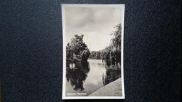 Old Photo Postcard - Deventer, Plantsoen - Deventer