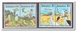 Jamaica 1988, Postfris MNH, Birds - Jamaica (1962-...)