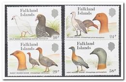 Falklandeilanden 1988, Postfris MNH, Birds - Falklandeilanden