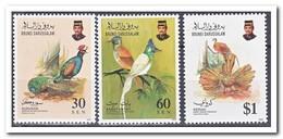 Brunei 1992, Postfris MNH, Birds - Brunei (1984-...)