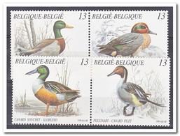 België 1989, Postfris MNH, Birds, Ducks - België