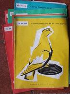 Lot De 13 Revues Tir Au Vol - Revue Française Du Tir Aux Pigeons - Entre N°228 Et 256 - Livres, BD, Revues