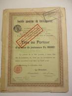 Société Anonyme Du Süd-Kamerun - Titre Au Porteur D'un Titre De Jouissance - Afrique