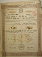Société De La Tannerie De L'AZOFF - Part De 125 Roubles - Russie