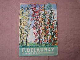 PEPINIERES  DELAUNAY  Angers - Doué La Fontaine 2 Catalogues 1934/35 Et 1936/37 TBE D'ensemble - F. Trees & Shrub