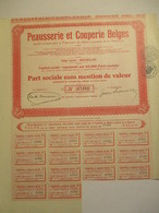 Peausserie Et Couperie Belges - Part Sociale Sans Mention De Valeur - Capital Représenté Par 65 000 Parts - Textiel