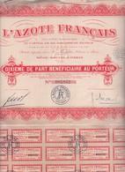 Alb 35 Titres L Azote Français 1929N=7 - Aandelen