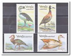 Venda 1987, Postfris MNH, Birds - Venda