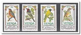 Venda 1985, Postfris MNH, Birds - Venda