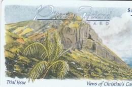Pitcairn - Views Of Christian's Cave: Palm Tree - Pitcairn Islands