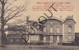 Reclamekaart VIELSALM Château Vicomte De Jonghe à Vielsalm - J. Denis - Andernach Industriel  (O400) - Vielsalm