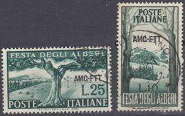 TRIESTE  Zona A AMG-FTT - 1951 - Serie Completa Usata: Yvert 130/131; Due Valori. - Gebraucht