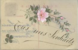 Themes Div-ref AA814- Carte Celluloide -celluloid -translucide - Carte Peinte A La Main - Tous Mes Souhaits  - - Cartes Postales