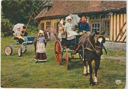 DAV : Calvados :  LISIEUX :  Groupe  Folklorique : 1978 , Caléche  , Cheval - Lisieux
