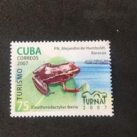 CUBA. 2007. FROG. MNH (C3404B) - Grenouilles