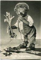 """""""SIE SALLEN DIR GLUCK BRINGEN"""" MECKI FROM THE FILM """"HOR ZU!"""" DIEHL POSTAL CIRCULATED 1958  HEDGEHOG PUPPET - LILHU - Mecki"""