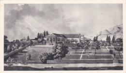 SAINTE HELENE   :  Carte PLASMARINE :  Longwood  . Oblitération Sainte Hélène - Sainte-Hélène