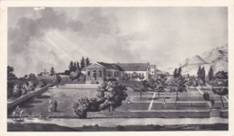 SAINTE HELENE   :  Carte PLASMARINE :  Longwood  . Oblitération Sainte Hélène - Saint Helena Island