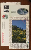 Mt.Gutianshan Scenic Spot,waterfall,China 2002 Kaihua Headstream Of Qianjiang River Tourism Advert Pre-stamped Card - Other
