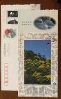 Mt.Gutianshan Scenic Spot,waterfall,China 2002 Kaihua Headstream Of Qianjiang River Tourism Advert Pre-stamped Card - Holidays & Tourism