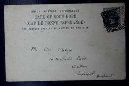 Cape Of Good Hope  Postcard T10 King William Town -> Liverpool UK 1898 - Südafrika (...-1961)