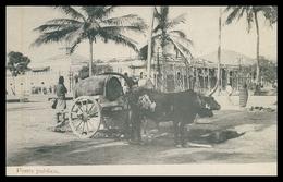 ANGOLA -COSTUMES - Fonte Publica.   Carte Postale - Angola