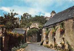 ROCHEFORT EN TERRE - Maison Fleurie (edts Jean à AUDIERNE N° 20.327 ) - Rochefort En Terre